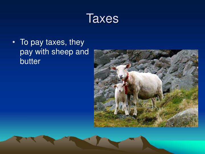 To pay taxes, they pay with sheep and butter