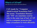 what is a cat tool introduction provided by hermann bruns