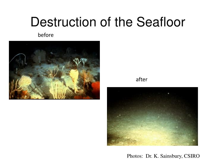 Destruction of the Seafloor