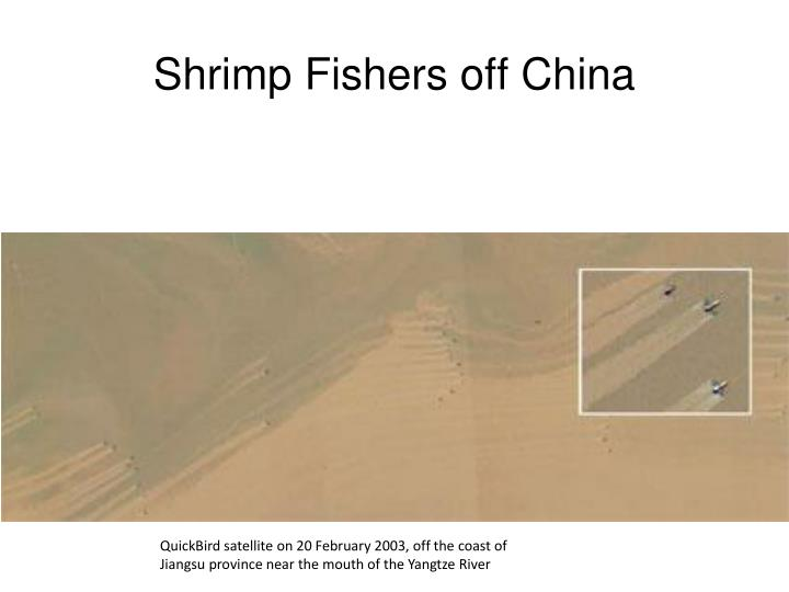 Shrimp Fishers off China