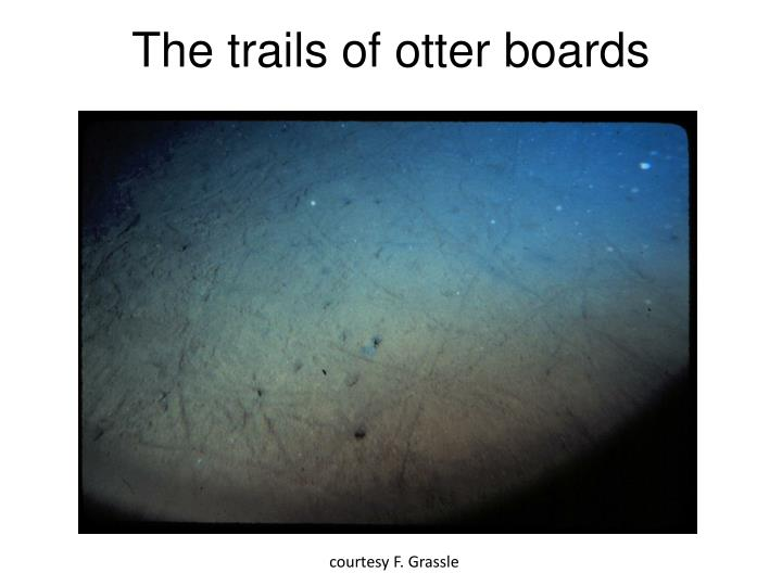 The trails of otter boards