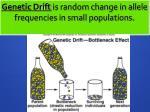genetic drift is random change in allele frequencies in small populations
