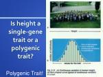 is height a single gene trait or a polygenic trait