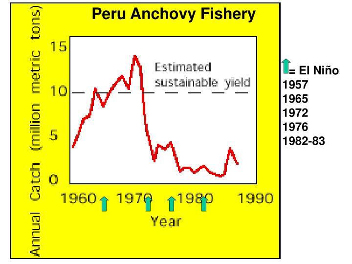 Peru Anchovy Fishery