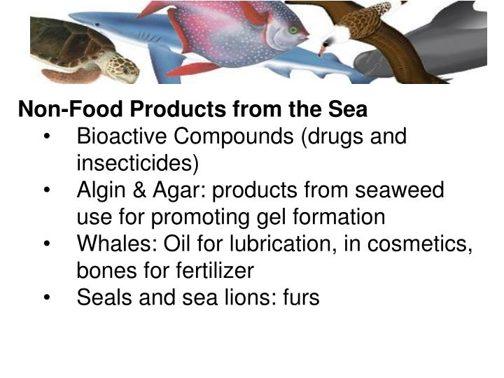 Non-Food Products from the Sea