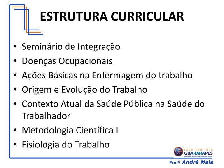 ESTRUTURA CURRICULAR