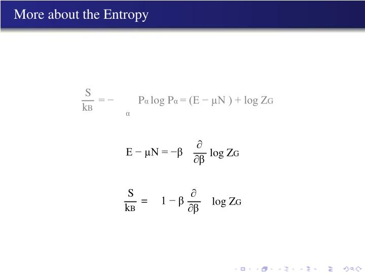 More about the Entropy