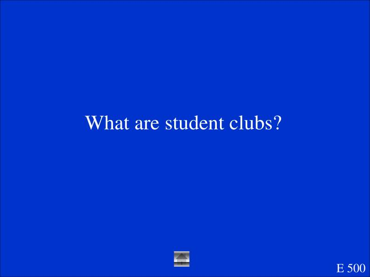 What are student clubs?