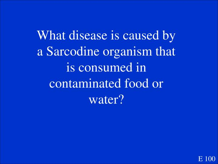 What disease is caused by a Sarcodine organism that is consumed in contaminated food or water?