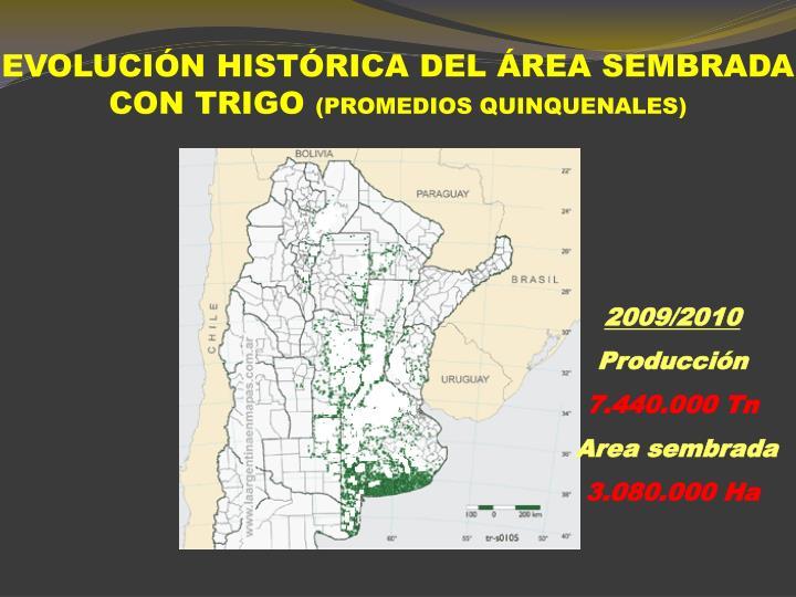 EVOLUCIÓN HISTÓRICA DEL ÁREA SEMBRADA CON TRIGO