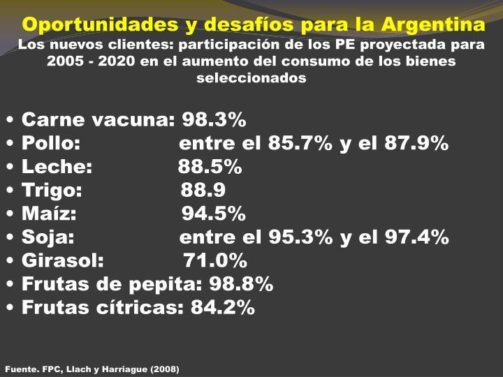 Oportunidades y desafíos para la Argentina