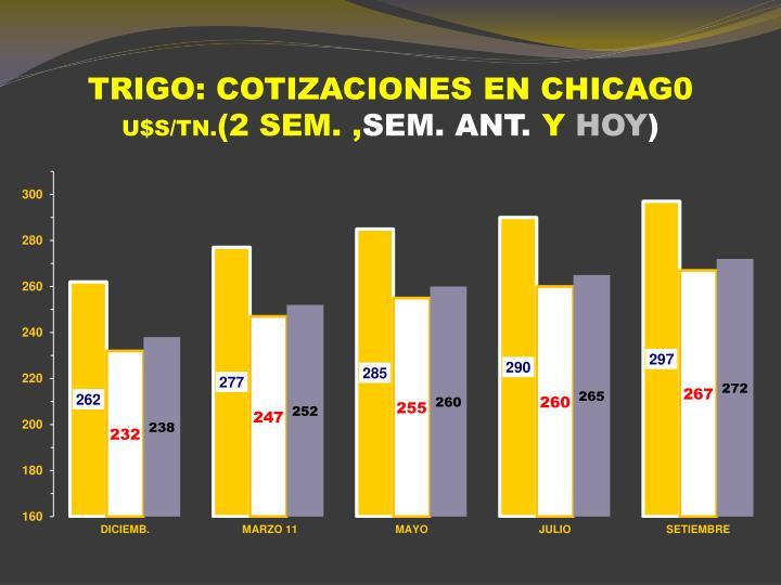 TRIGO: COTIZACIONES EN CHICAG0