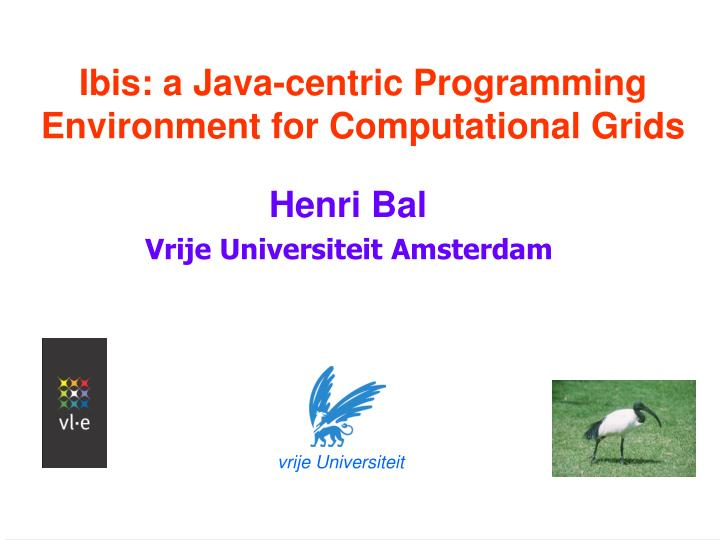 Ibis a java centric programming environment for computational grids