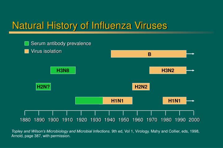 Natural History of Influenza Viruses