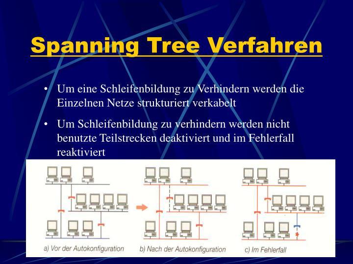 Spanning Tree Verfahren