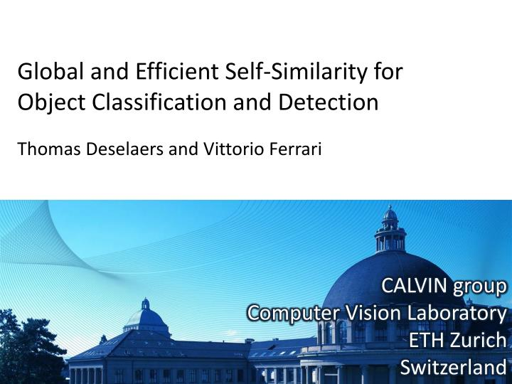 Global and efficient self similarity for object classification and detection