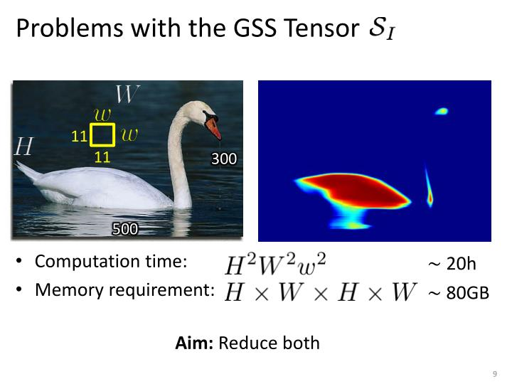 Problems with the GSS Tensor