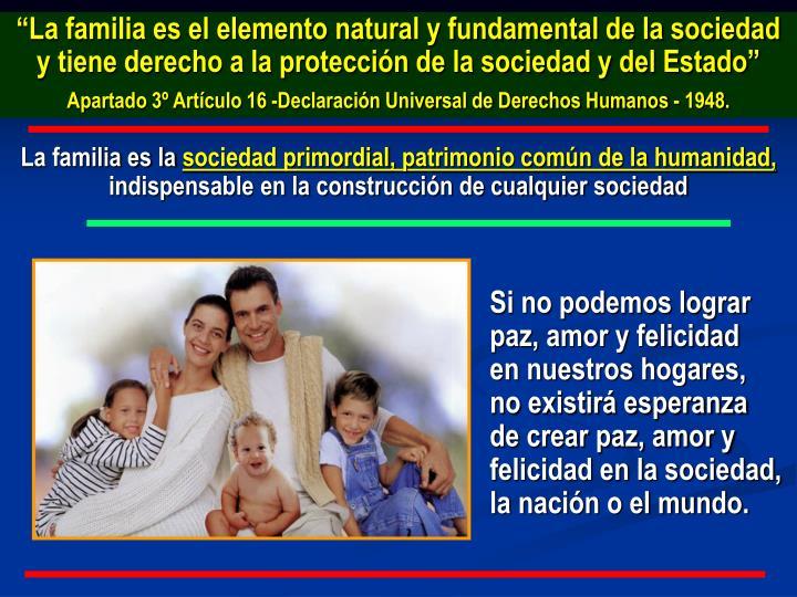 """""""La familia es el elemento natural y fundamental de la sociedad y tiene derecho a la protección de la sociedad y del Estado"""""""