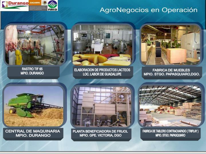 AgroNegocios en Operación
