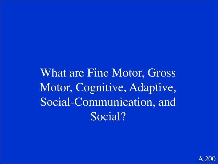 What are Fine Motor, Gross Motor, Cognitive, Adaptive, Social-Communication, and Social?