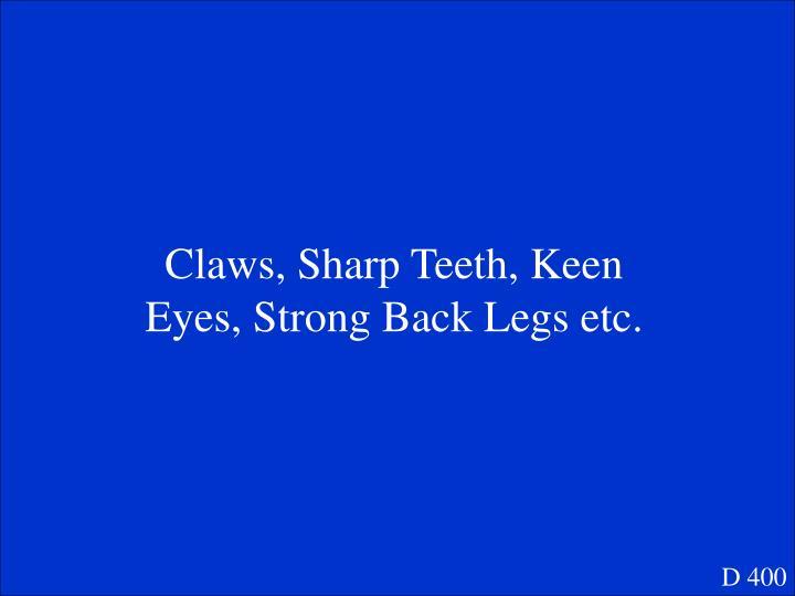 Claws, Sharp Teeth, Keen Eyes, Strong Back Legs etc.