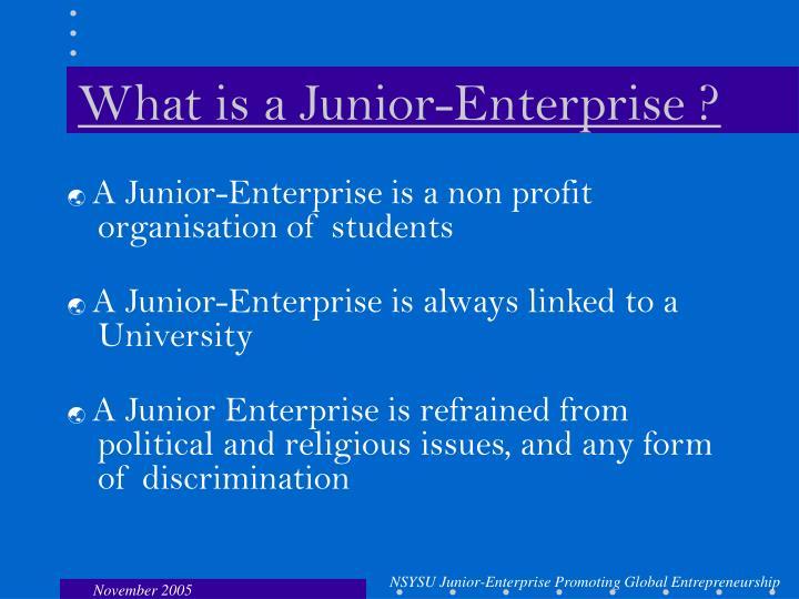 What is a junior enterprise