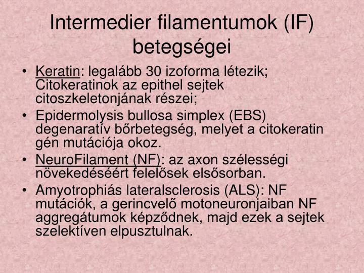 Intermedier filamentumok (IF) betegségei