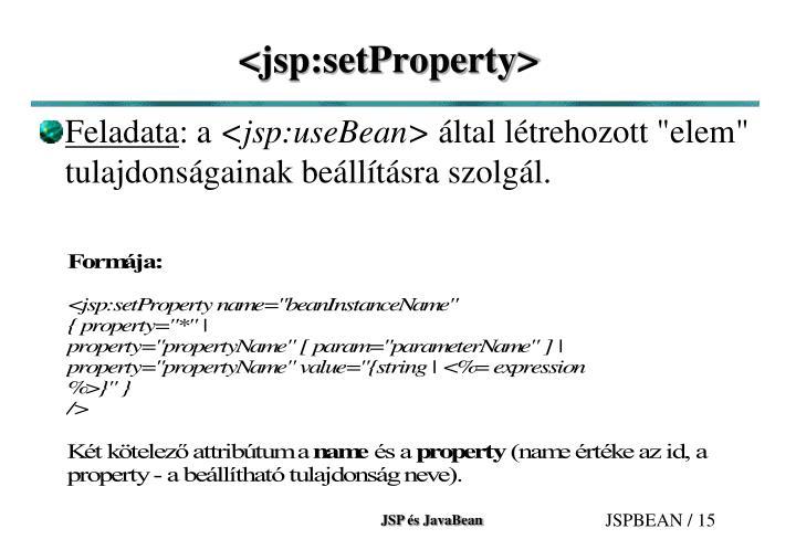 <jsp:setProperty>