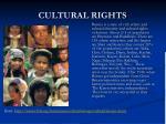 cultural rights