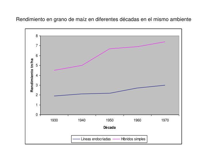 Rendimiento en grano de maíz en diferentes décadas en el mismo ambiente