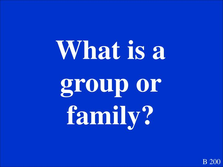 What is a group or family?