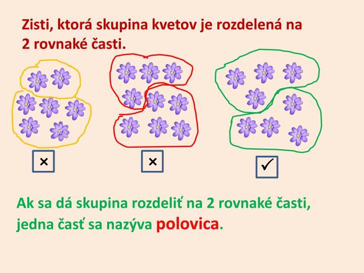 Zisti, ktorá skupina kvetov je rozdelená na            2 rovnaké časti.
