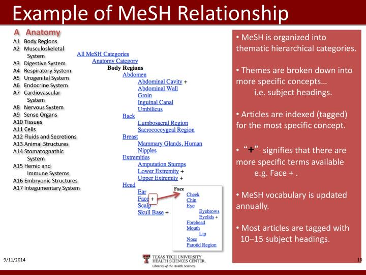 Example of MeSH Relationship