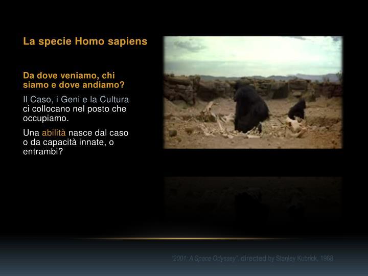 La specie Homo sapiens