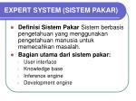 expert system sistem pakar