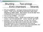 shunting two prongs echo chambers strands