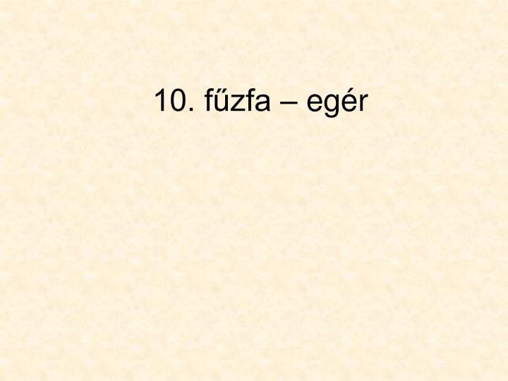 10. fűzfa – egér