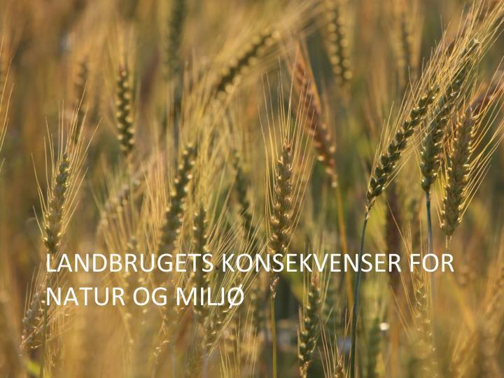 Landbrugets konsekvenser for natur og milj