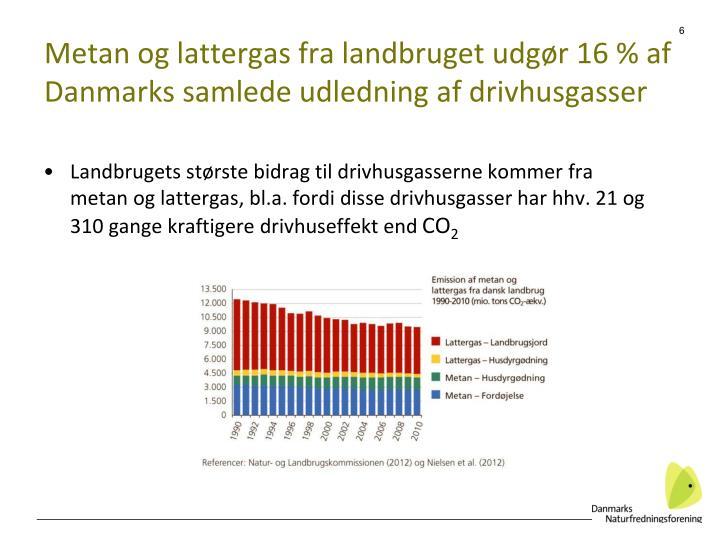 Metan og lattergas fra landbruget udgør 16 % af Danmarks samlede udledning af drivhusgasser