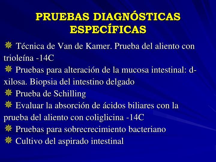 PRUEBAS DIAGNÓSTICAS ESPECÍFICAS