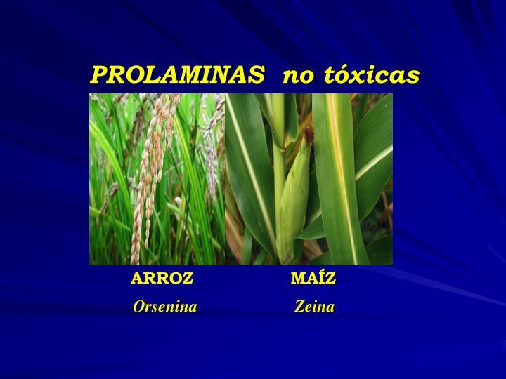 PROLAMINAS  no tóxicas
