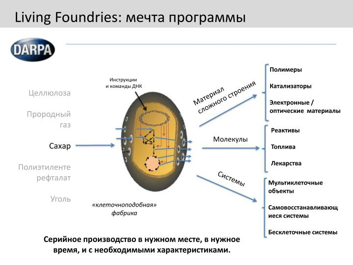 Living Foundries: