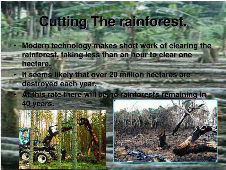 Cutting The rainforest.