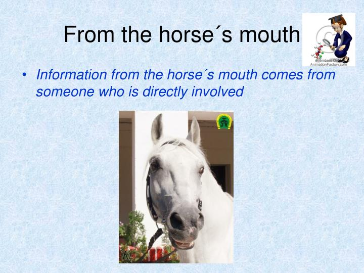 From the horse´s mouth