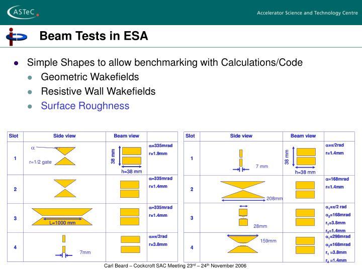 Beam Tests in ESA