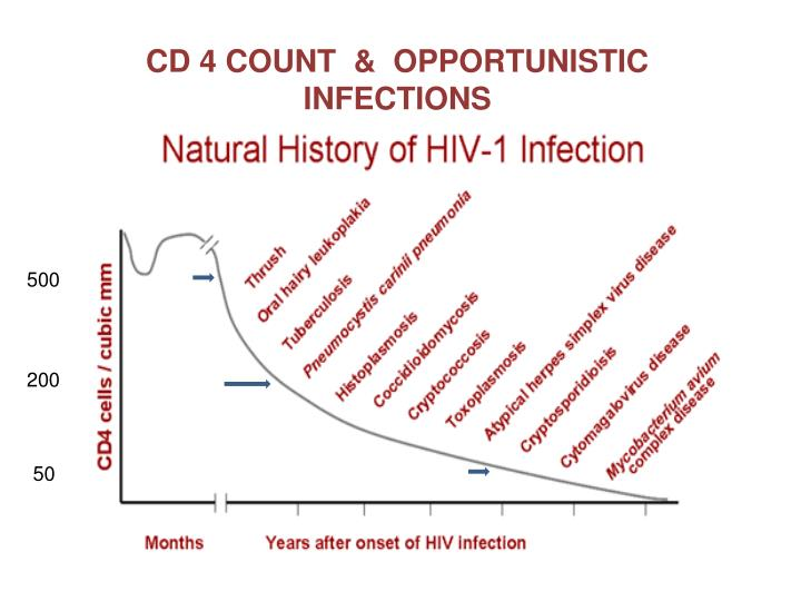 CD 4 COUNT  &  OPPORTUNISTIC INFECTIONS