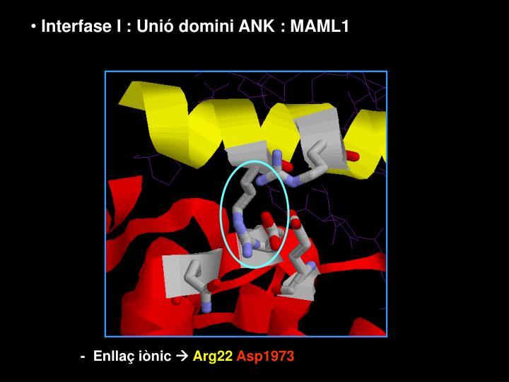 Interfase I : Unió domini ANK : MAML1