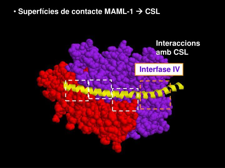 Superfícies de contacte MAML-1