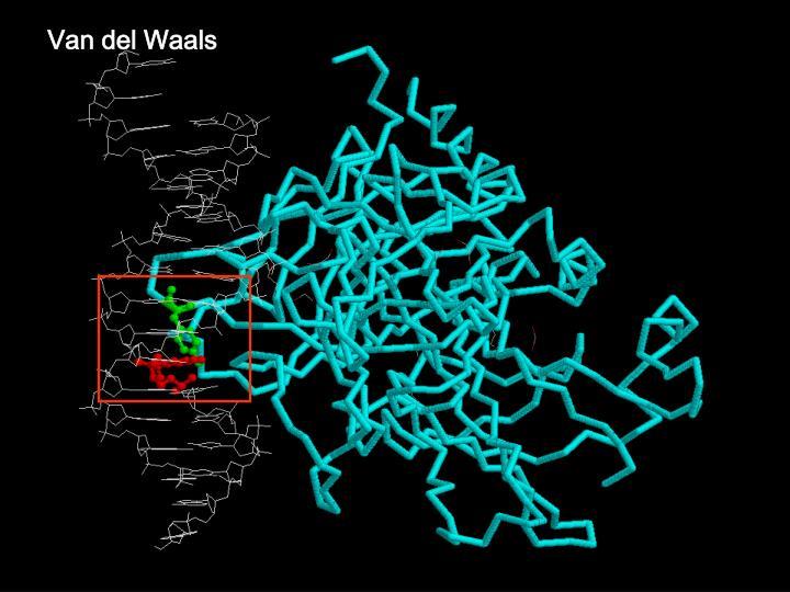 Van del Waals