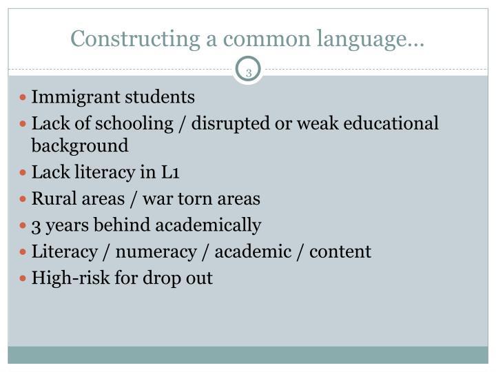 Constructing a common language